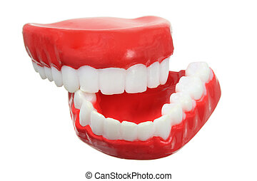 Fake Teeth on White Background