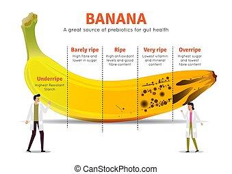 fakty, banan, żywienie