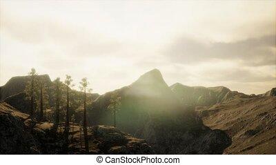 falaise, arbres, lumière, soleil