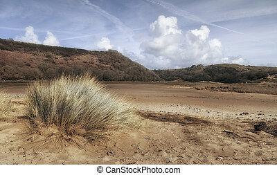 falaises, herbe, trois, marram, baie