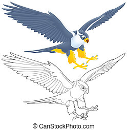 Falcon - flying falcon, isolated color drawing and black-and...
