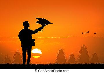 falconer - illustration of falconer