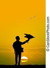 falconry at sunset - illustration of falconry at sunset