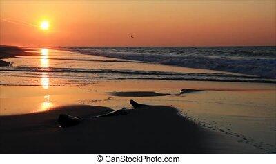 fale przybrzeżne, wschód słońca, hd, pętla