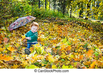 Fall. Adorable child boy with leave