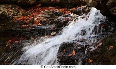 Fall and Fall Foliage Loop