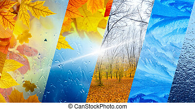 Fall and winter, weather forecast concept