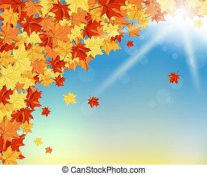 Fall (Autumn) Background