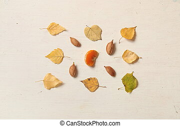 Fall. Autumn composition. with leaves and nuts