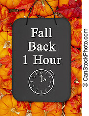 Fall Back 1 hour time change message on a chalkboard sign on pumpkins