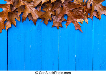 Fall background leaves blue boards