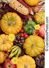 Fall background with pumpkins.