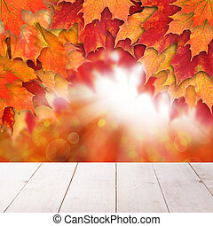 Fall background with red autumn maple leaves and abstract sun li