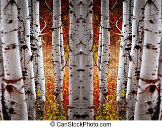 Fall Birch Leaves