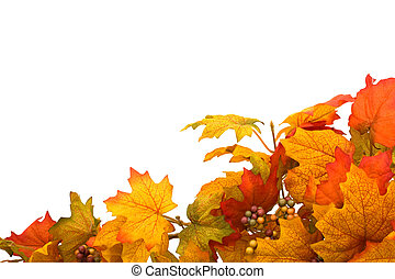 Fall Border - Fall leaves making a border isolated on a...
