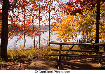 Fall by the lake 4