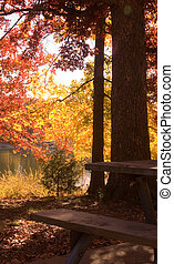 Fall by the lake 5 - A lovely fall scene beside a lake iin ...