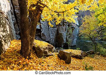 Fall canyon scene