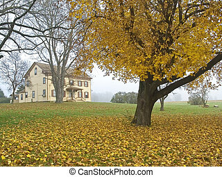 Fall Colonial - An historic old colonial building used as a...