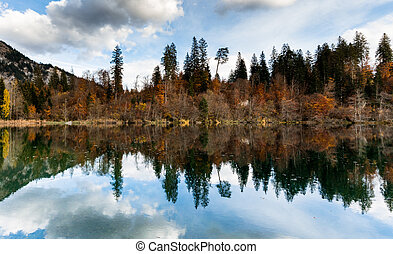 fall color forest and foliage landscape surround an idyllic mountain lake in the Alps of Switzerland on a late autumn day with reflections in the water