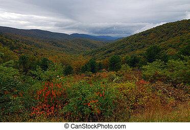 Fall Color Shenandoah National Park Virginia