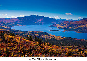 Fish Lake, Yukon Territory, Canada - Fall-colored boreal...
