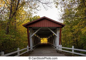 Fall Colors Begin to Show Around Everett Bridge