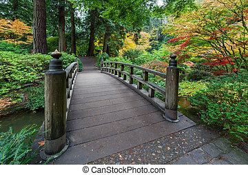Fall Colors by the Foot Bridge