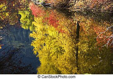 Fall Colors Close Up River Stevens Pass Leavenworth Washington