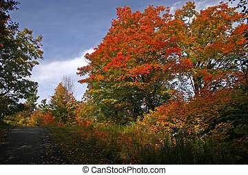 Fall colors. - Fall colors at Mackenzie King Estate.