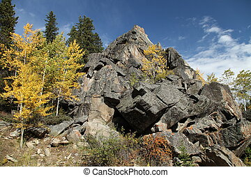 Fall colors in Bighorn Mountains, Wyoming