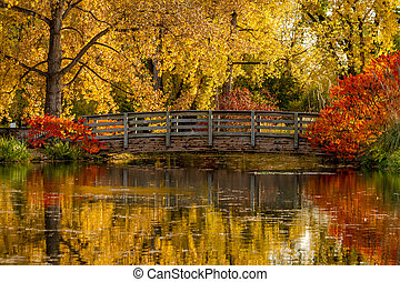 Fall Colors in Outdoor Park - Gorgeous fall scene of...