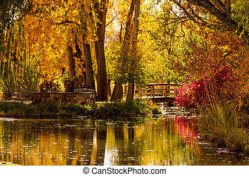 Fall Colors in Outdoor Park - Small pond with wooden bridge ...