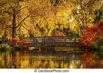 Fall Colors in Outdoor Park - Autumn scene with wooden...