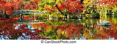 Fall Colors - Japanese garden panorama.