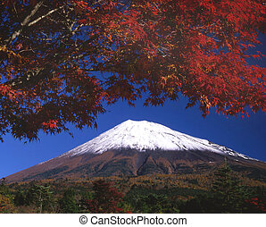 Mount Fuji with deep red leaves