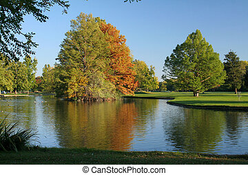 trees in a park reflecting fall colors in a pond