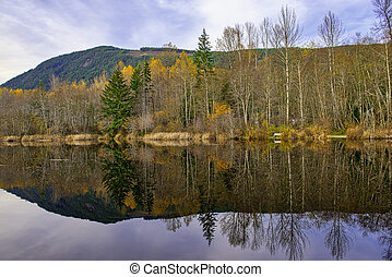 Fall colors reflections at lake Cowichan in Vancouver Island...