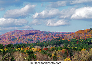 Fall Colours in Lee, Mass from a hill top