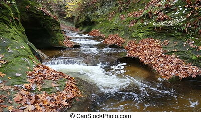 Fall Creek Gorge in Autumn Loop - Seamless loop features...