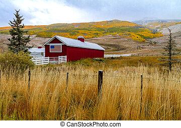fall- farbe, und, schnee, in, colorado