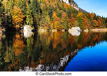 Fall foliage color reflected in a lake. Austria, Tyrol, Berglsteinersee.