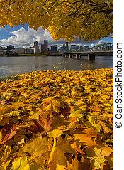 Fall Foliage in Portland Oregon City