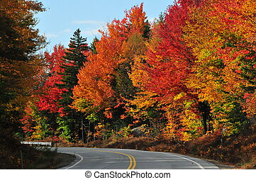 Colorful foliage on the Kancamagus Highway in Northern NH, ia 34 mile scenic highway that stretches from Lincoln, NH to Conway, NH