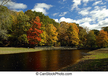 Fall Foliage - A nature scene with Fall in the new england...
