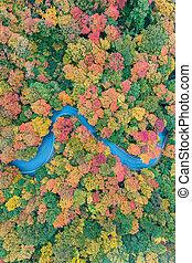 Fall Foliage - Vermont
