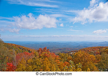 Fall Foliage,Blue Ridge Mountains, N.C.