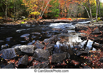Fall forest and river landscape - Forest river in the fall....