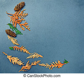 Fall frame, cones, cedar, arborvita