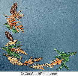 Fall frame, cones, cedar